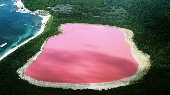 Lake Hillier (Pink Lake) in Esperance, Western Australia